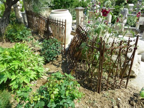 Old wrought iron railling - old railling with a small old gate.